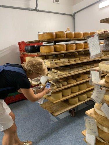 La stagionatura dei formaggi