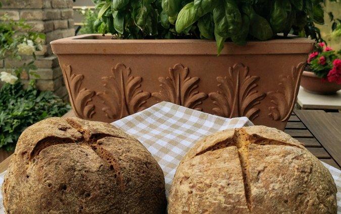 Pane nero ai semi di lino senza glutine